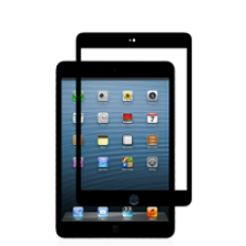 iVisor Glass for iPad mini